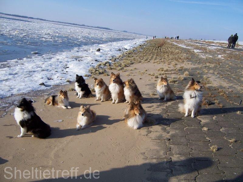 05.02.2012: Kollmar