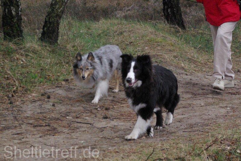 01.04.2012: Sprötze (Nordheide)