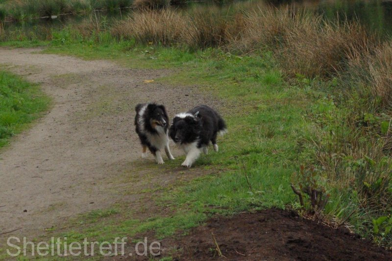 06.05.2012: Himmelmoor