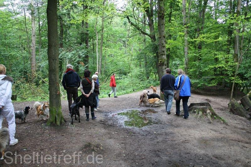 217.06.2012: Duvenstedt