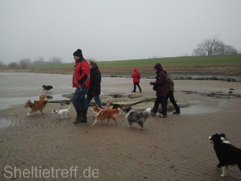 06.01.2013: Kollmar